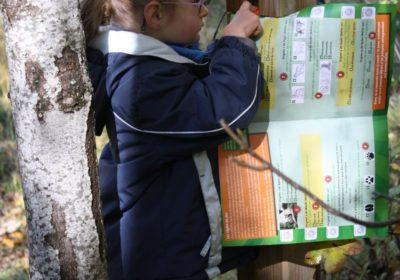 Parcours d'orientation permanent enfant