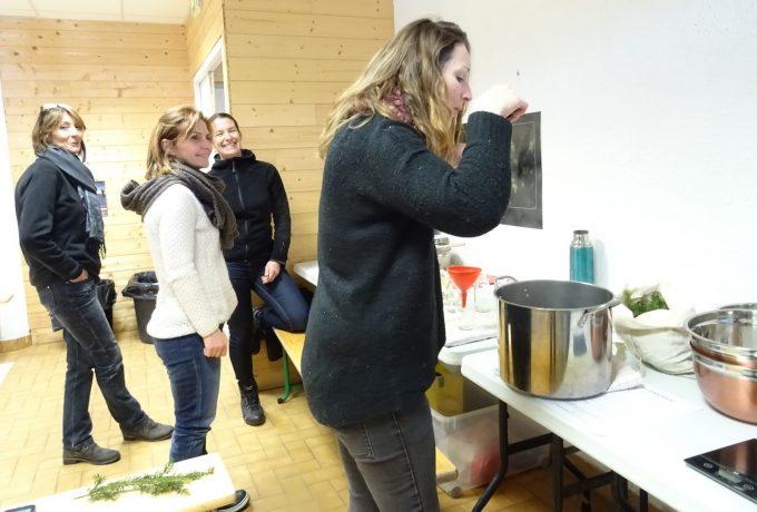 atelier plantes hiver épicea