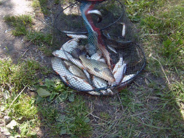 pêche au Lauvitel