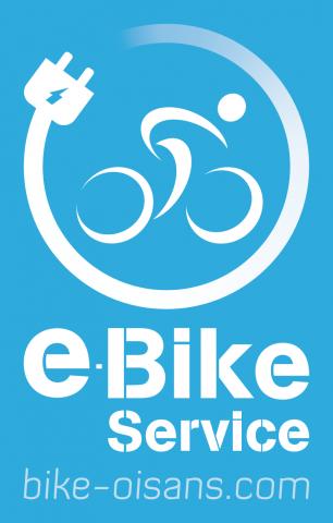 e bike seevice